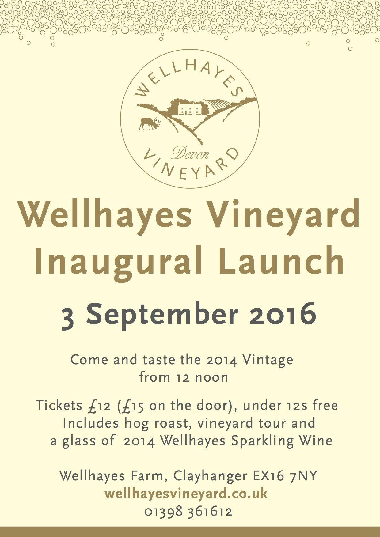 Vineyard Launch